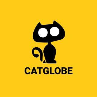 Cats | Kittens | Pets