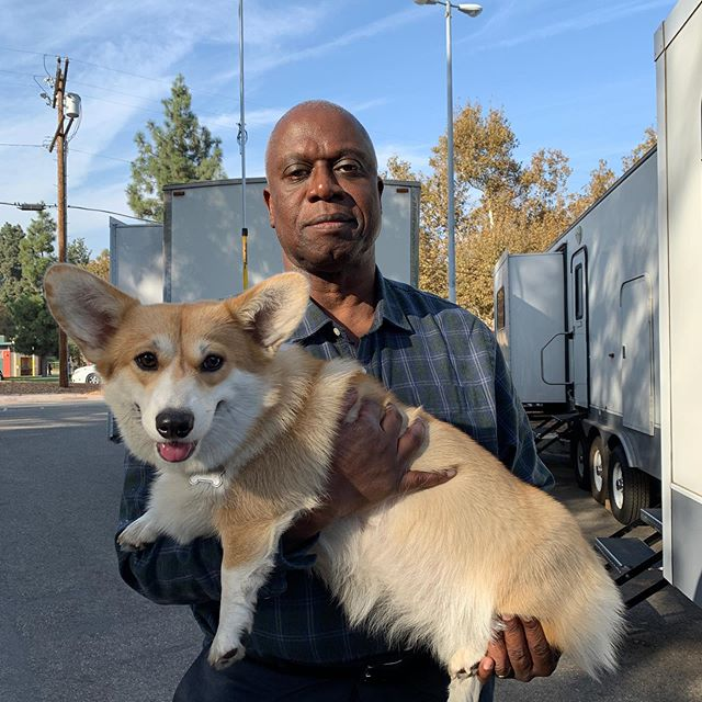 No one messes with Holt's fluffy boy! #Brooklyn99