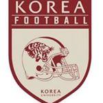 고려대학교 미식축구부 KOREA TIGERS