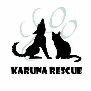 Karuna Rescue China