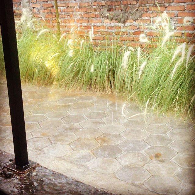 Hujan membawa berkah, bukan musibah. Nikmati suara hujan, lepaskan stress. Enjoy your life.  #menghilangkanstress  #hujanberkah #menikmatihidup #menikmatisore #bahagia #santuy #menikmatihujan