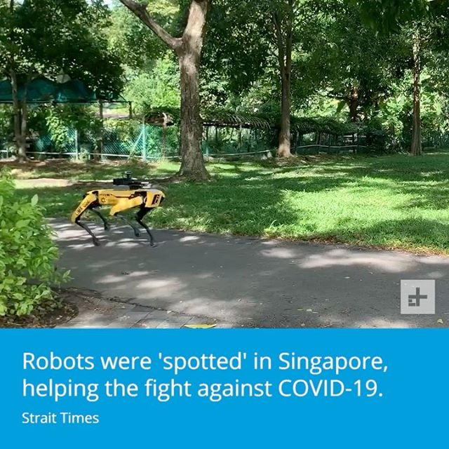 Singapore is using robots to encourage safe social distancing during the coronavirus pandemic.