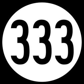Mister 333
