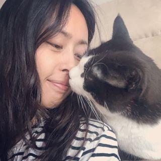 원폴리쓰리강냥이❣️Polly&Cats 유튜브시작했어여
