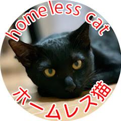 ホームレス猫