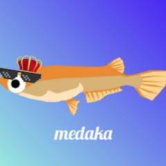 メダカ_medaka
