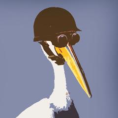 Modest Pelican Gaming