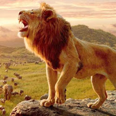 Lion King TV