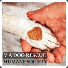 V.A Dog Rescue