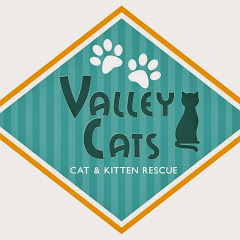 Valley Cats Rescue