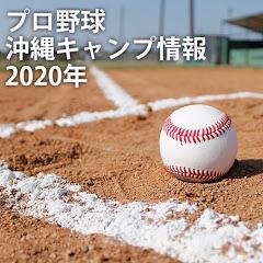プロ野球2020!!