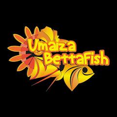 umaiza bettafish