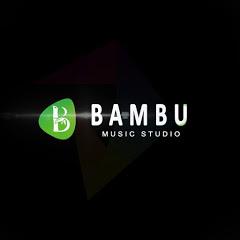 Bambu studio