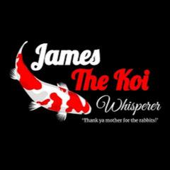 James THE KOI whisperer