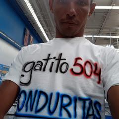 gatito 504 honduritas