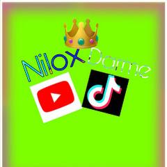 Nilox Darm