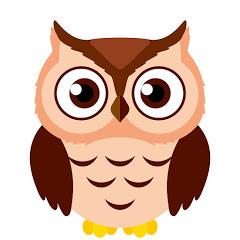 리뷰엉이: Owl's Review