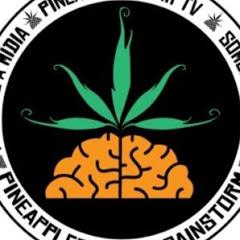 PineappleStormTV