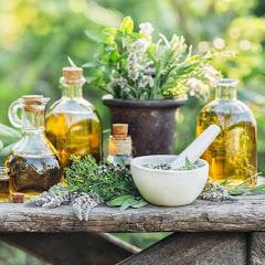 En Plantas Medicinales