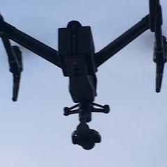 B Drones