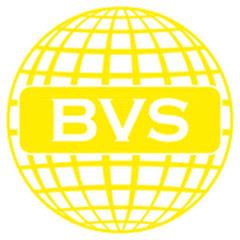 BVS Работа за границей