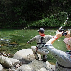 Trout Hunting NZ