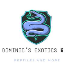 Dominic's Exotics