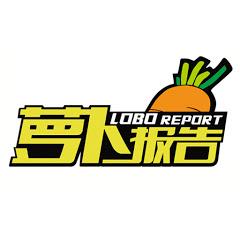 萝卜报告-LOBO REPORT
