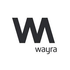 Wayra Startups