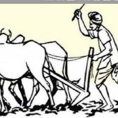 किसान का साथी