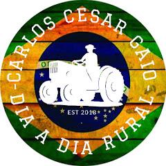 Carlos Cesar Gaio - dia a dia rural