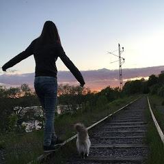 Stockholm Walks