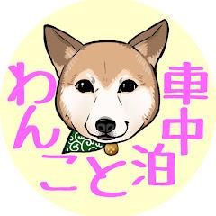 わんこと車中泊/car traveling with my dog