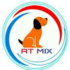 At Mix