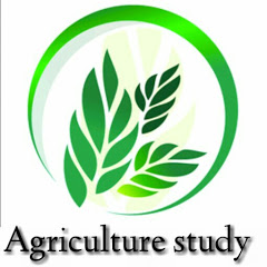 Agriculture Study