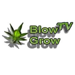 BlowGrow TV