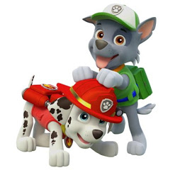 Rocky Paw And the paw patrol