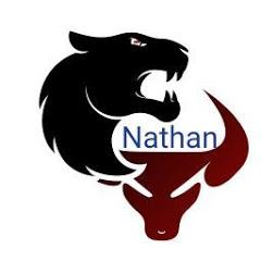 Nathan jeux vidéo