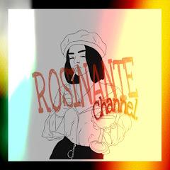 Rosinante channel.