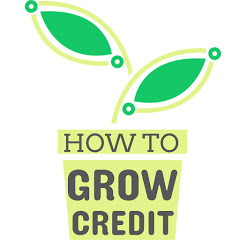 How to Grow Credit