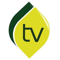 Salam Televisi