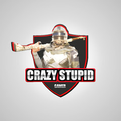 CSG Crazy Stupid Gamer