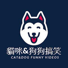 貓咪&狗狗搞笑 Cat&dog Funny videos