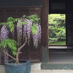 古民家暮らし Traditional Japanese House Life