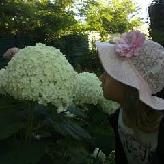 Аннабель и ее растения