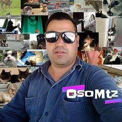 Doblaje OsoMtz