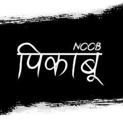 Noob Pikaboo