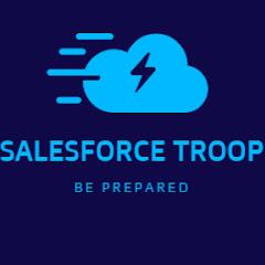 Salesforce Troop