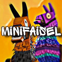 Mini Faisel
