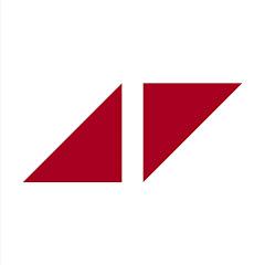 Avicii Nippon